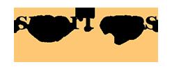 Smart Eyes Logo
